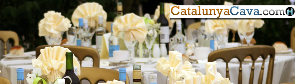 h-Catering-&-Event-Supplies-cava