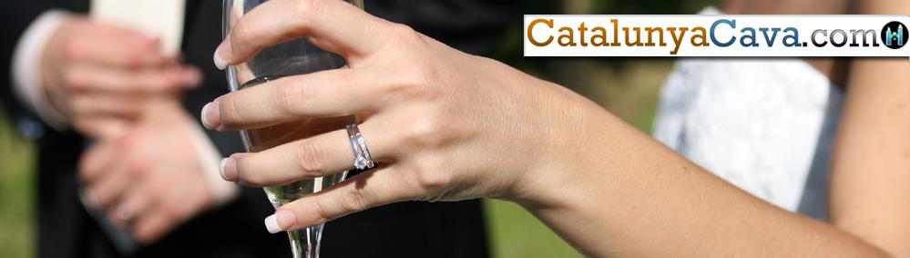 h-bulk-wedding-supplies-cava